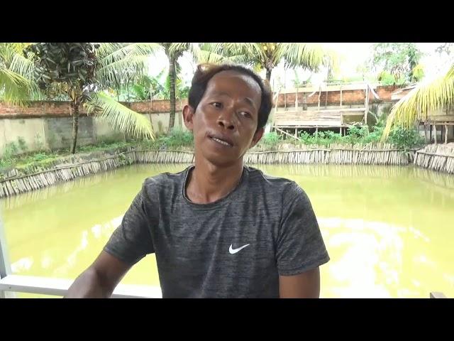 Kisah Tragis Calon Pengantin yang Tewas Tenggelam di Kolam Ikan Lele