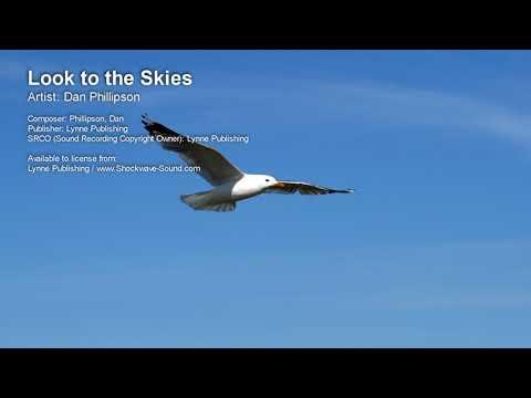 Look to the Skies  Dan Phillipson Lynne Publishing