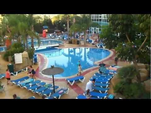 flamingo oasis sun lounger dash