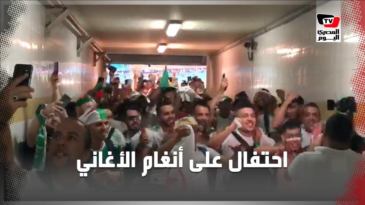المصري اليوم:على أنغام الأغاني الجزائرية.. احتفالات عارمة لجماهير الجزائر بعد تأهل منتخبهم لنهائي أمم أفريقيا