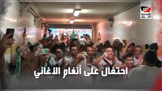 على أنغام الأغاني الجزائرية.. احتفالات عارمة لجماهير الجزائر بعد تأهل منتخبهم لنهائي أمم أفريقيا