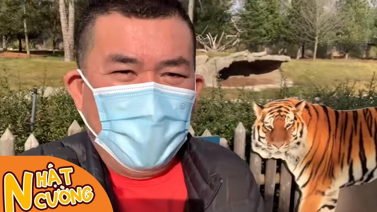 Nhật Cường lần đầu đi sở thú ở Mỹ