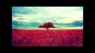 Sunny Lax - Contrast (Original Mix)