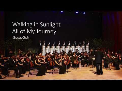 Walking in Sunlight All of My Journey