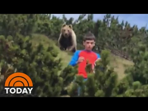 Caught On Video: Bear Creeps Up On 12-Year-Old Boy | TODAY