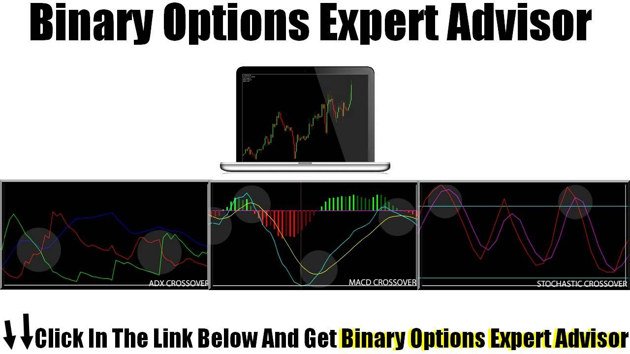 Expert advisor for binary options