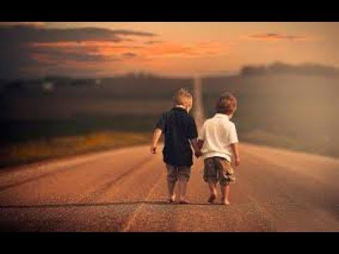 Jaane nahi denge tuzhe... (3 idiots movie song) whatsapp status video friendship song #sp3535