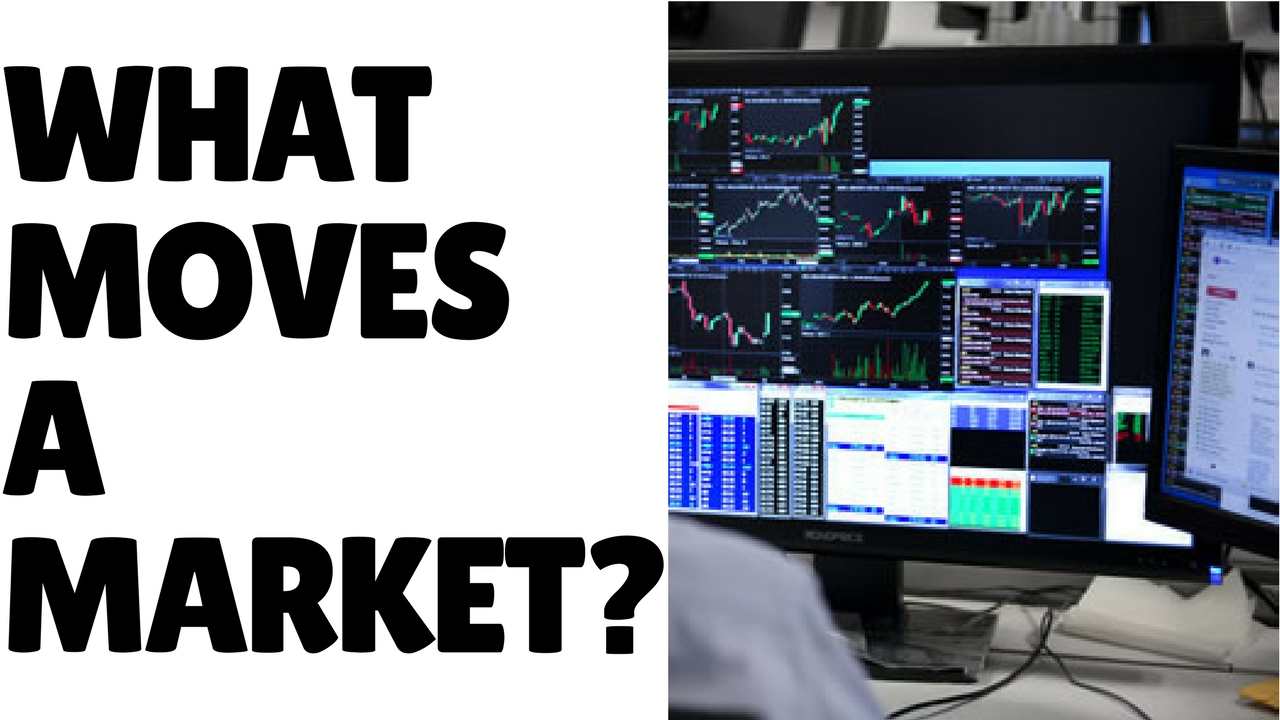 Lesson 03: What Moves a Market? The Players