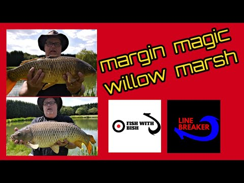 How To Fish The Margins For Big Carp At Willow Marsh 2019