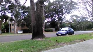Winter leaves.. Gravely 36' Sydney South, Australia