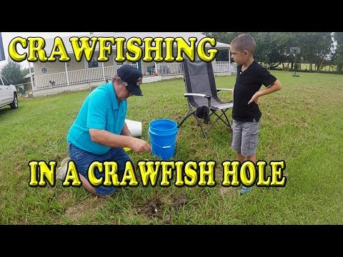 Texas Crawfishing In A Crawfish Hole With String
