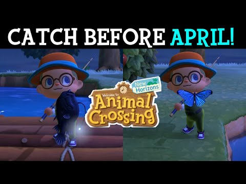 Fish And Bugs You Need To Catch In Animal Crossing New Horizons Before The End Of March!