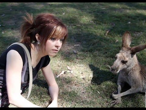 Kangaroo Date - Lindsey Stirling