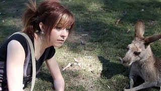 Download Kangaroo Date - Lindsey Stirling MP3 song and Music Video
