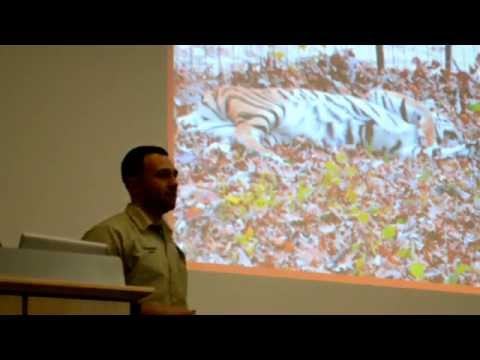 SUNY ESFTalks Big Cats: Available in Backyards Nationwide