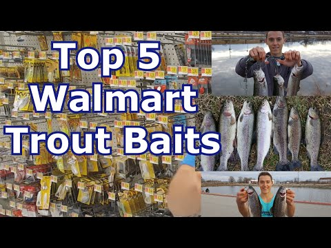 Best 5 Walmart Trout Lures And Baits