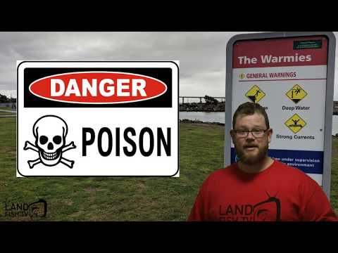 POISONED WATERS - The Warmies (hotties) - Yarra River - Fishing