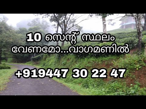 LAND FOR SALE IN VAGAMON ,10 CENT PLOT,KERALA PROPERTY ,OWNER +919447302247