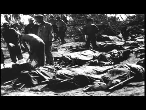 U.S. Marines of 1st Division suffer casualties during battle for Peleliu Island i...HD Stock Footage