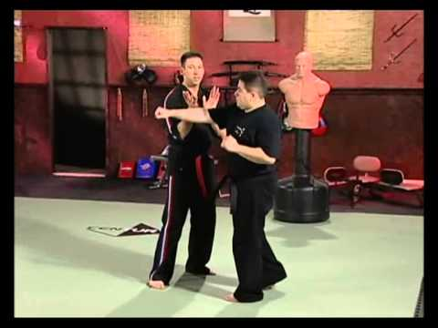 Volume 4: Pressure Point Knockouts: Moving Attacks with Sparring part 3