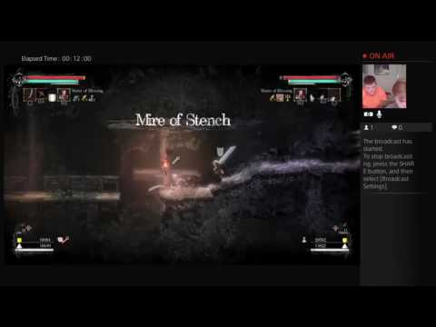 Ultimate gaming: Salt and Sanctuary pt.2 MORE POWER!!!