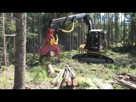 Cat® 501HD Track Harvester with a PD-57 Harvester Head