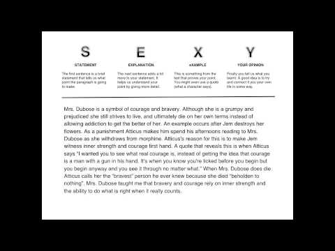 Outline of human sexuality