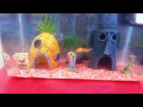 Best spongebob square pants aquarium and accessories youtube for Spongebob fish tank