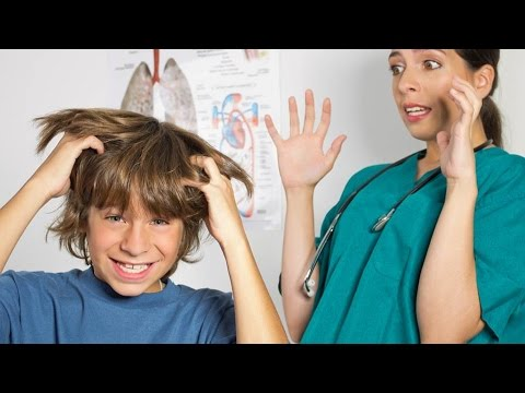 Педикулёз - причины, симптомы и профилактика педикулёза