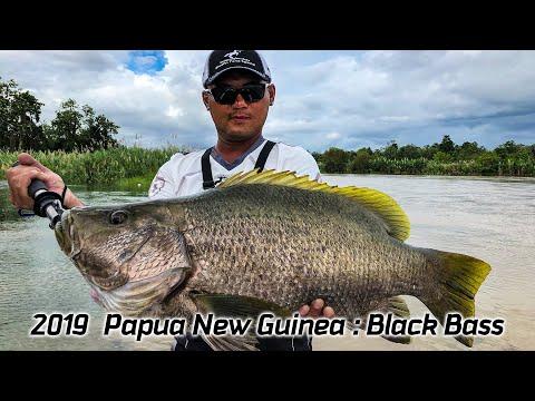 2019 Cenaur Papua New Guinea Fishing Trip  Challenge King Of River :Black Bass
