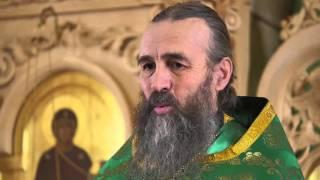 Проповедь отца Александра Захарова 24.04.2016