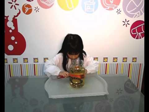 Graceful Hands Super Scientist Experiment Arielle Amazing Magnet