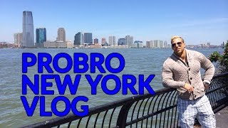 ProBro Vlog New York