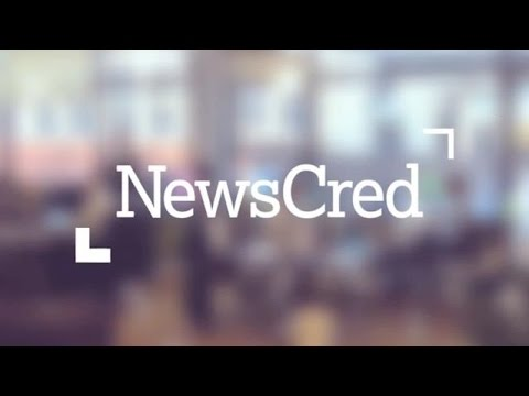 NewsCred's On Brand Office | TC Cribs
