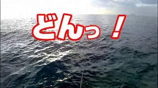 遊漁船で落とし込み釣りに初チャレンジしました。 小型のヒラマサですが...