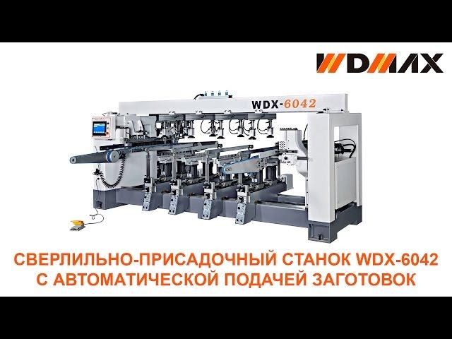Сверлильно-присадочный станок WDX-6042 с автоматической подачей заготовок