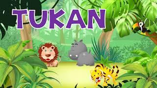🦁 Bajka edukacyjna  dla dzieci -  Dżungla