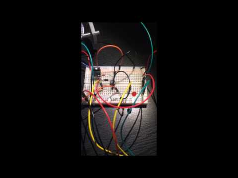 Processors Project 1