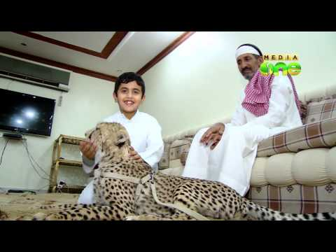 Weekend Arabia - Fathima, the leopard lives with an Arabian Family (17-2)