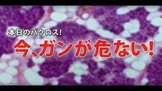 バクロスTV#9 テレビでは話せない!ここだけの本当の話!!市民バクロスTV 第9回 今、ガンがあぶない!