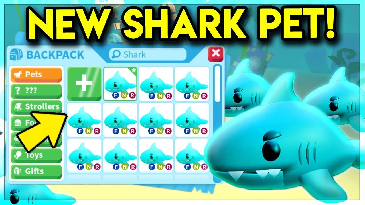 New Ocean Pet Discovered In Adopt Me Legendary Shark Pet Roblox Adopt Me Update Youtube
