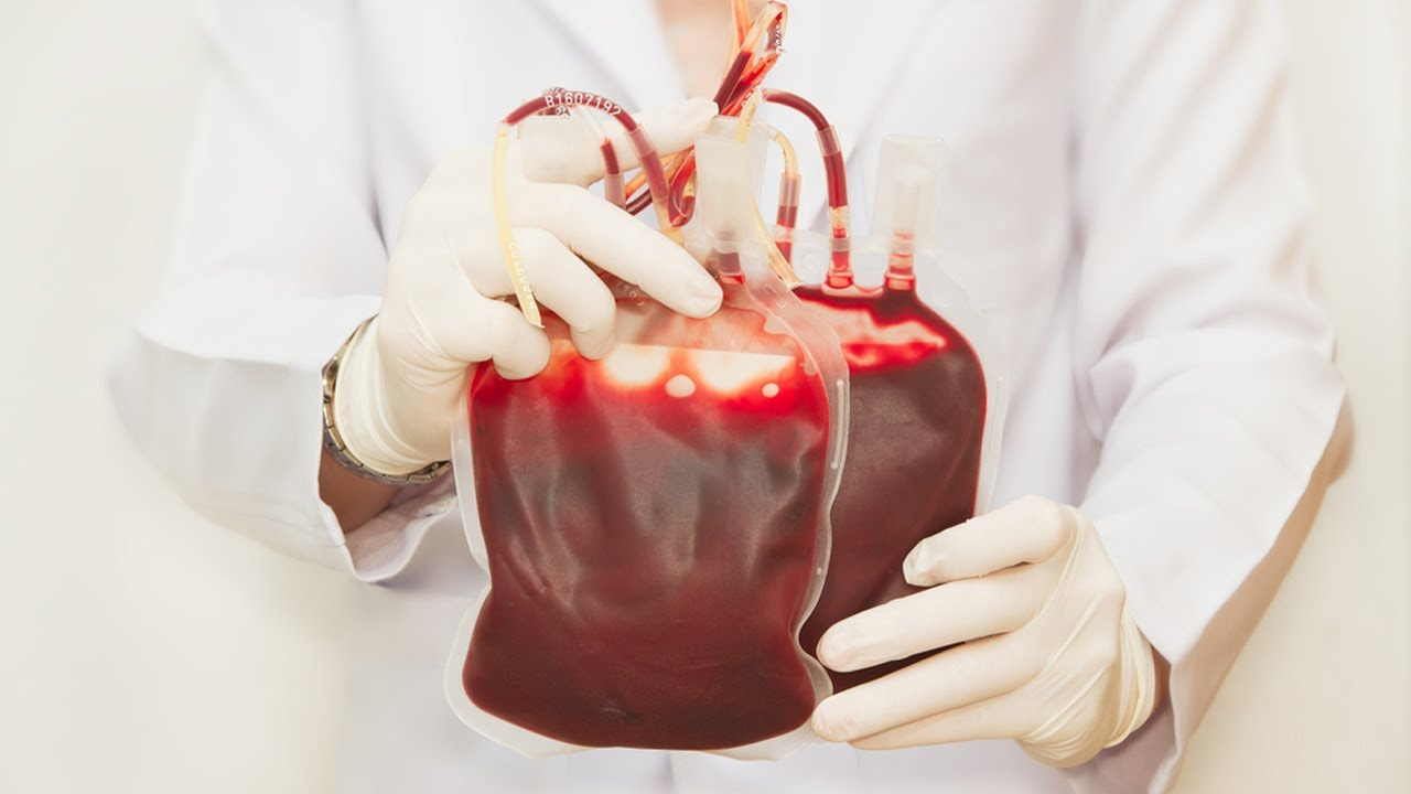 How much blood is in man 91