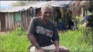 Sobreviventes: conheça histórias de quem escapou das maiores feras do Pantanal