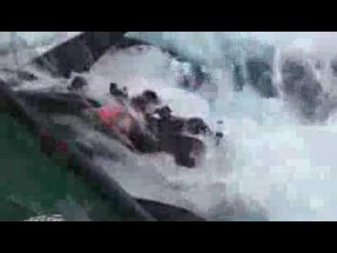 Japanese Whale killing vessel ramming Sea Shepherd's Ady Gill