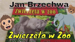 Zwierzeta w Zoo