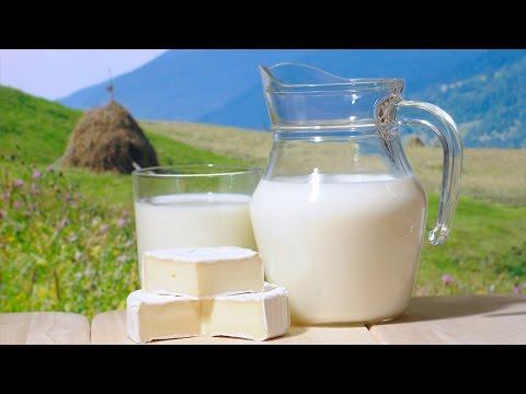Доктор Орлов. Молочные продукты.