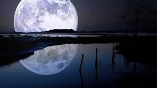 Ay tenli kadın cover