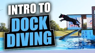 Intro To Dock Diving