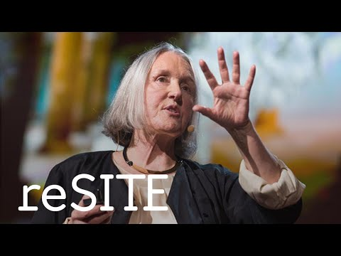 Saskia Sassen answers questions about migration. Discussion at reSITE 2016