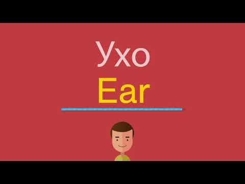 Болит ухо перевести на английский